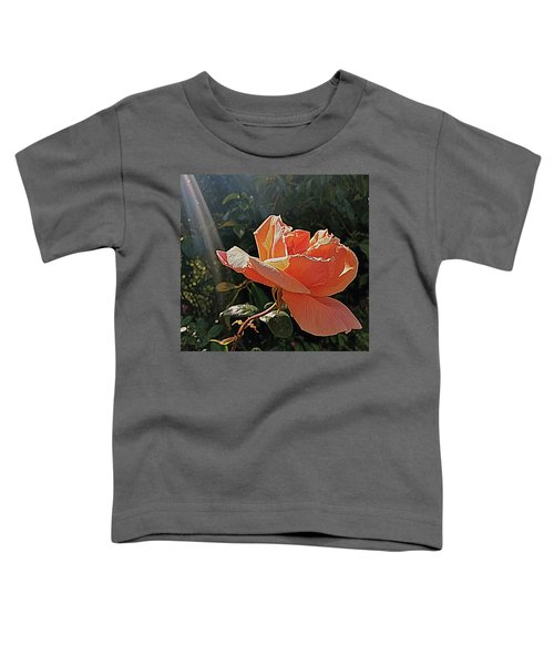 Rose And Rays Toddler T-Shirt