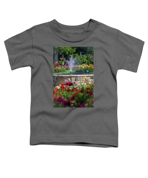 Rose Fountain Toddler T-Shirt