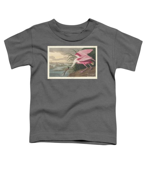 Roseate Spoonbill, 1836  Toddler T-Shirt