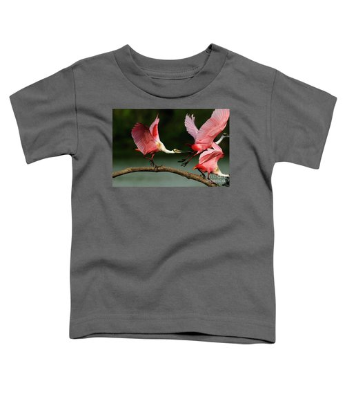 Rosiette Spoonbills Lord Of The Branch Toddler T-Shirt by Bob Christopher