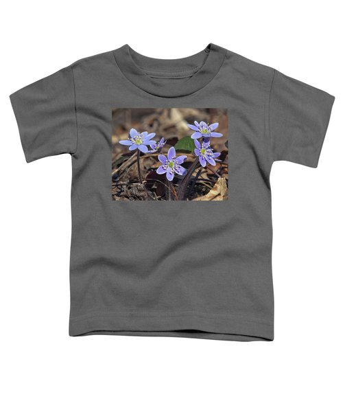 Round-lobed Hepatica Dspf116 Toddler T-Shirt