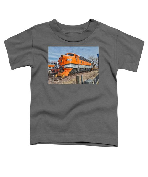 Royal Gorge Route 402 Toddler T-Shirt