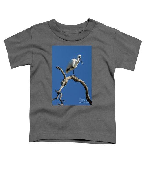 Royal Spoonbill 01 Toddler T-Shirt