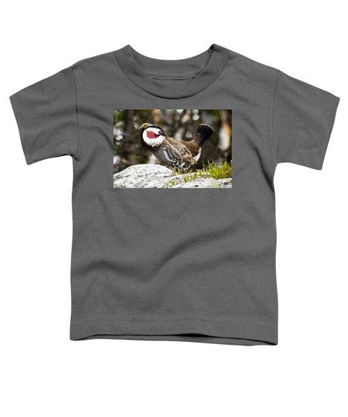 Ruffled Grouse II Toddler T-Shirt