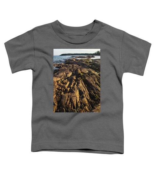 Rugged Killarney Shoreline-4441 Toddler T-Shirt