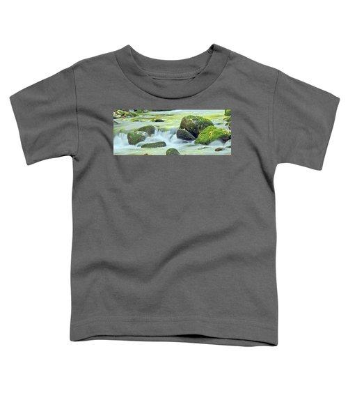 Running Water Toddler T-Shirt