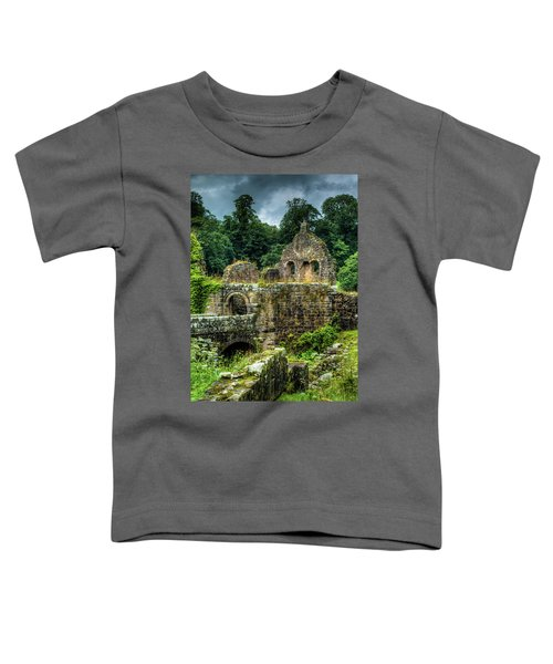 Rustic Abbey Remains Toddler T-Shirt
