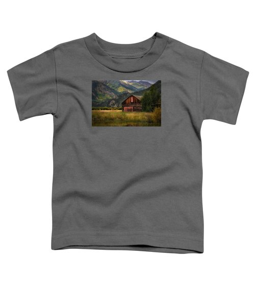 Rustic Colorado Barn Toddler T-Shirt