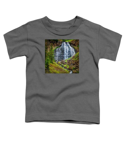 Rustic Falls  Toddler T-Shirt