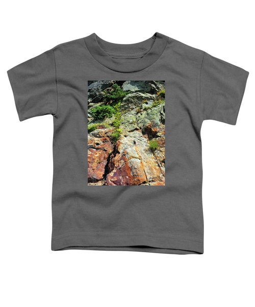 Rusty Rock Face Toddler T-Shirt