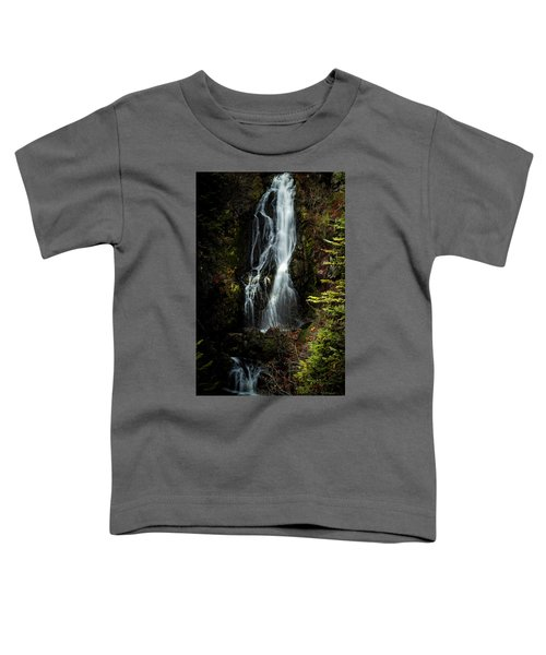 Sahale Falls Toddler T-Shirt