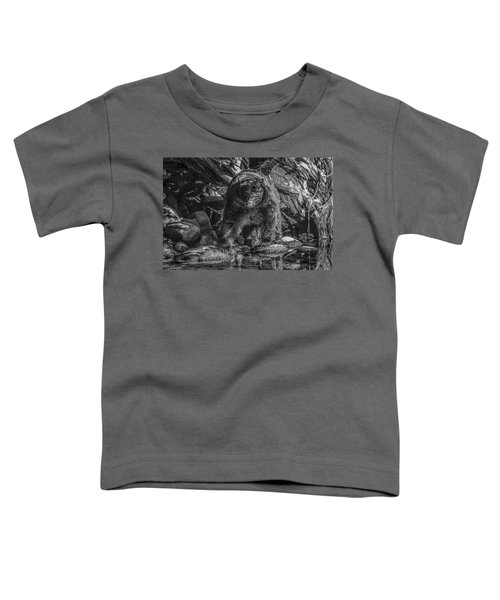 Salmon Seeker Black Bear  Toddler T-Shirt