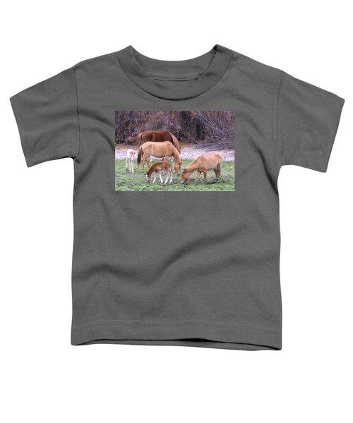 Salt River Wild Horses In Winter Toddler T-Shirt