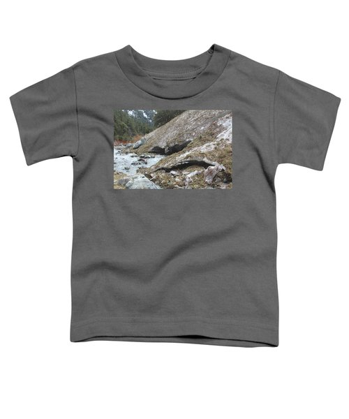 San Antonio Glacier Toddler T-Shirt