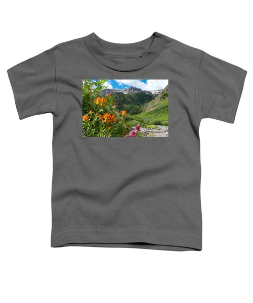 San Juans Indian Paintbrush Landscape Toddler T-Shirt