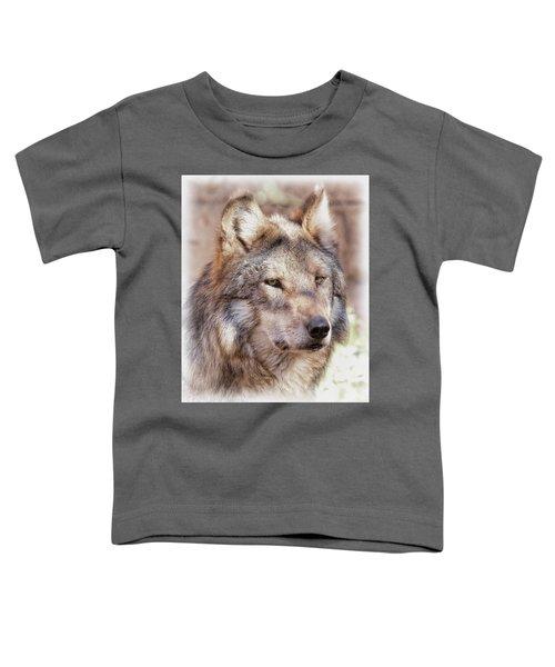 Sancho Toddler T-Shirt