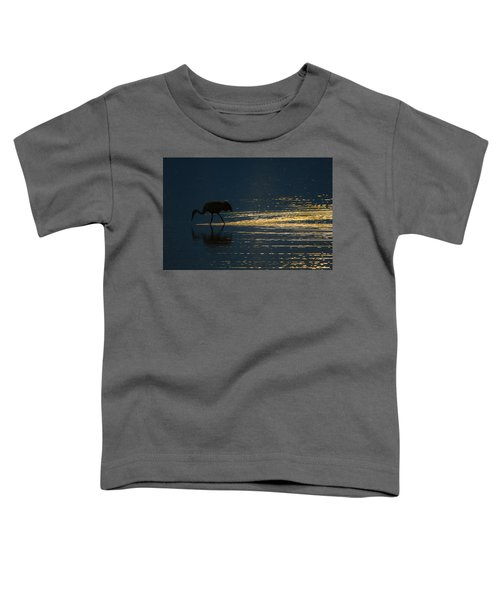 Light Trails Toddler T-Shirt