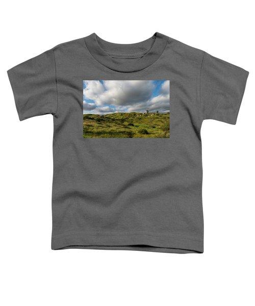 Santee Rocks Spring Toddler T-Shirt