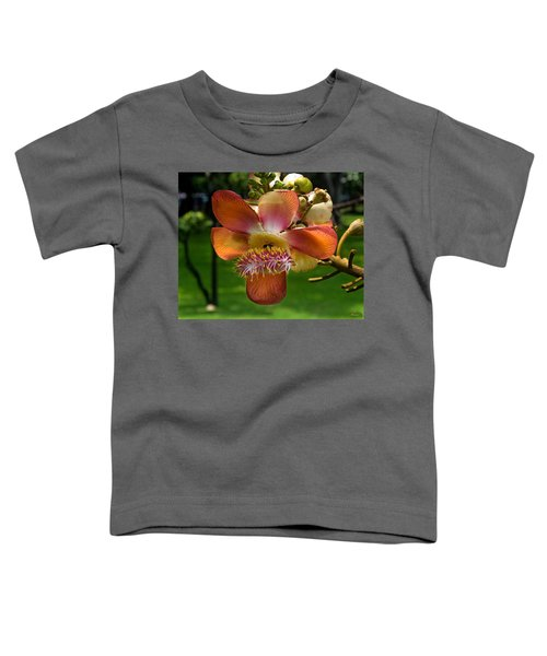 Sara Tree Flower Dthb104 Toddler T-Shirt