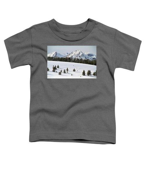 Sawtooth Wilderness Central Idaho Toddler T-Shirt