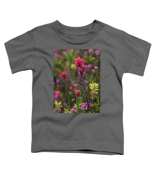 Scarlet Paintbrush Toddler T-Shirt