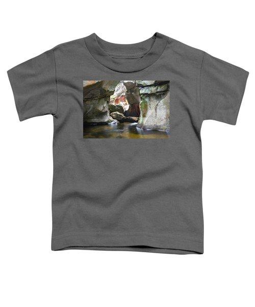 Screw Auger Falls Cavern Toddler T-Shirt