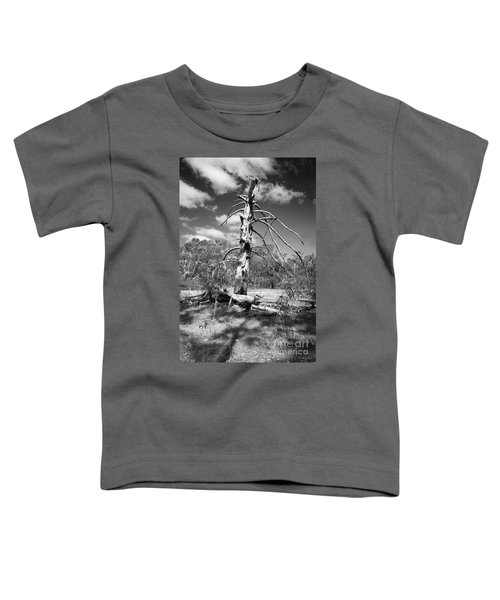 Sculpted By Time Toddler T-Shirt