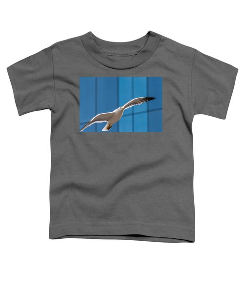 Seabird Flying On The Glass Building Background Toddler T-Shirt