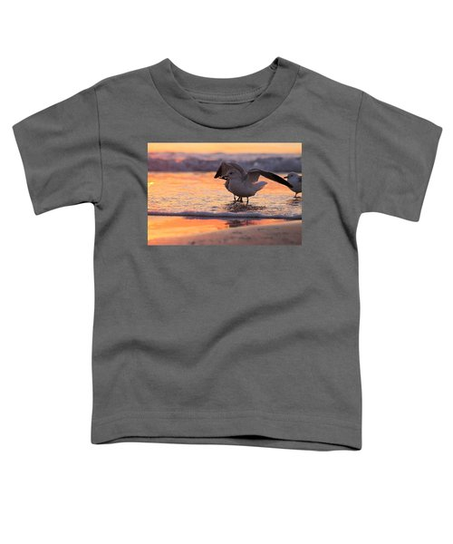 Seagull Stretch At Sunrise Toddler T-Shirt