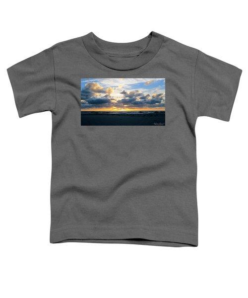 Seagulls On The Beach At Sunrise Toddler T-Shirt