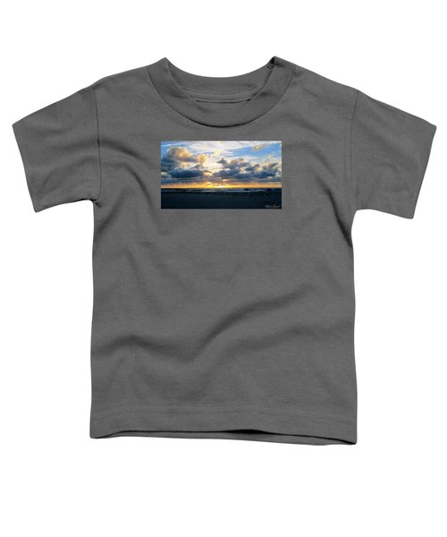 Seagulls On The Beach At Sunrise Toddler T-Shirt