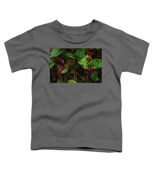Season Color Toddler T-Shirt