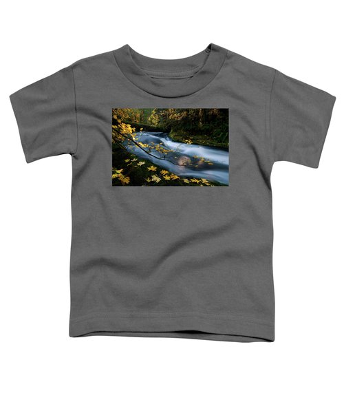 Seasonal Tranquility Toddler T-Shirt