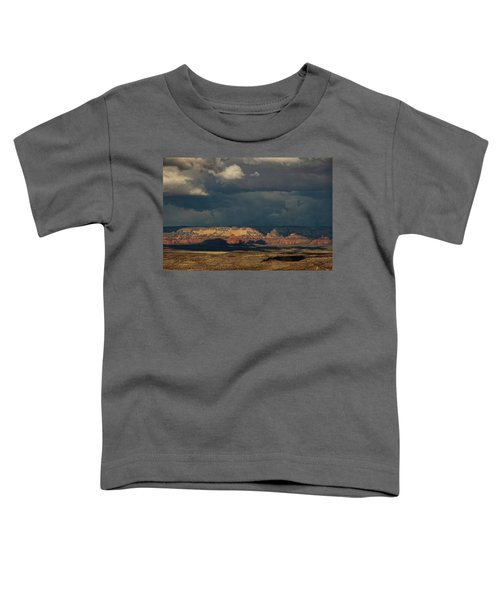 Secret Mountain Wilderness Storm Toddler T-Shirt