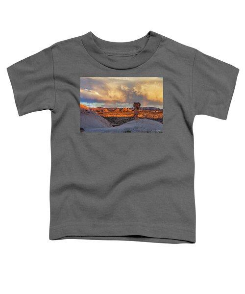 Secret Spire Sunset 1 Toddler T-Shirt