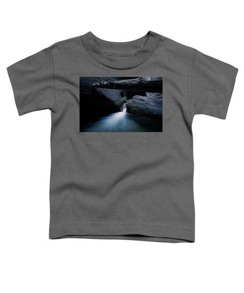 Secret Stream Toddler T-Shirt