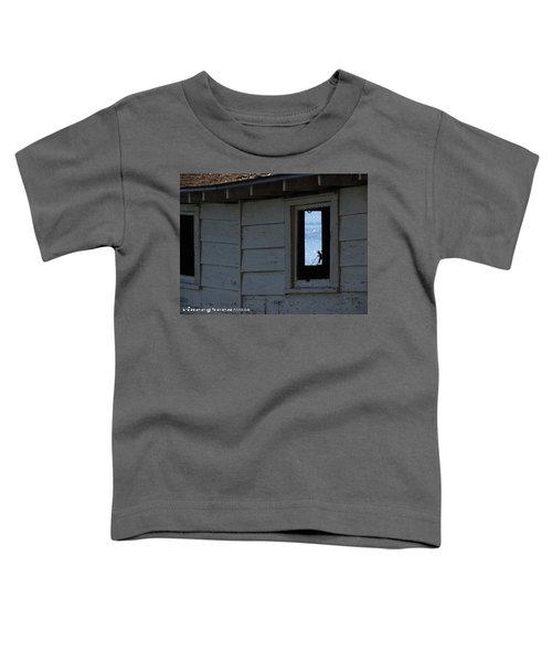 Secrets Of The Georgia Coastal Empire Toddler T-Shirt
