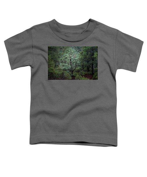 Sedona Tree #1 Toddler T-Shirt