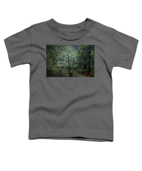 Sedona Tree #1 Toddler T-Shirt