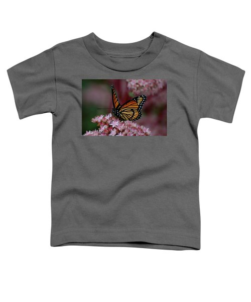 Sedum Butterfly Toddler T-Shirt