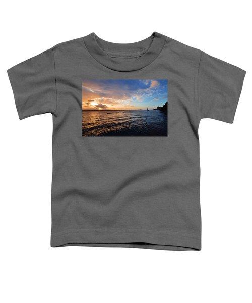 Semblance 3769 Toddler T-Shirt