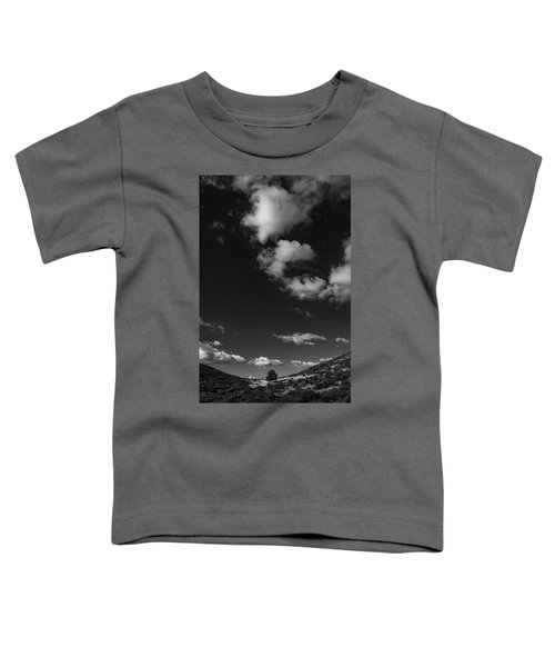 Sentinel's Expanse Toddler T-Shirt