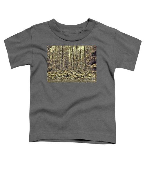 Sepia Landscape Toddler T-Shirt
