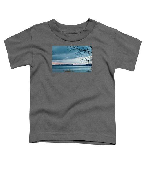 Shades Of Blue As Night Falls Toddler T-Shirt