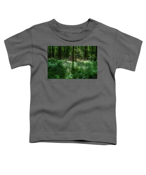 Shadow And Light In A Forest Toddler T-Shirt