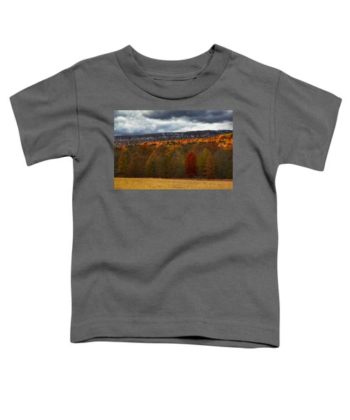 Shawangunk Mountains Hudson Valley Ny Toddler T-Shirt