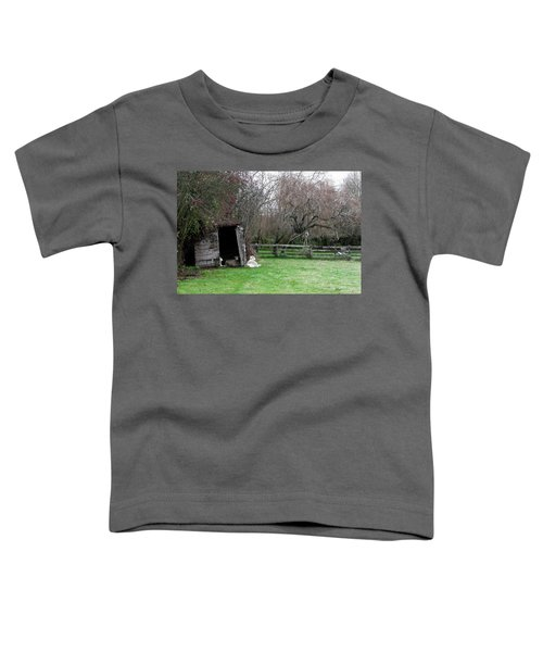 Sheep Shed Toddler T-Shirt