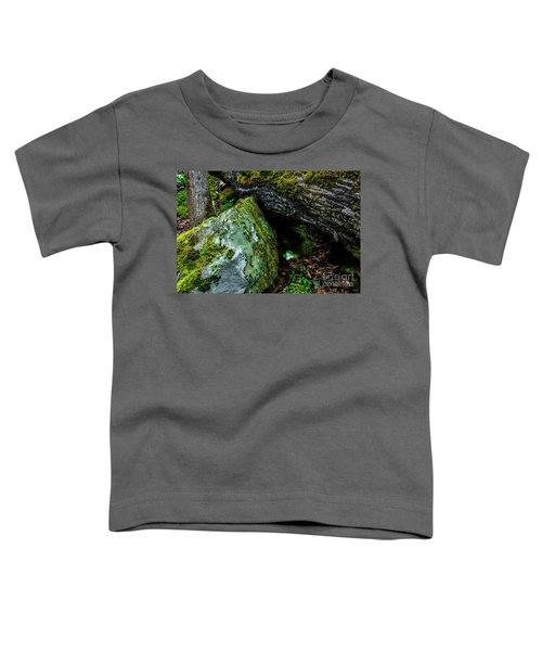 Sheltered By The Rock Toddler T-Shirt
