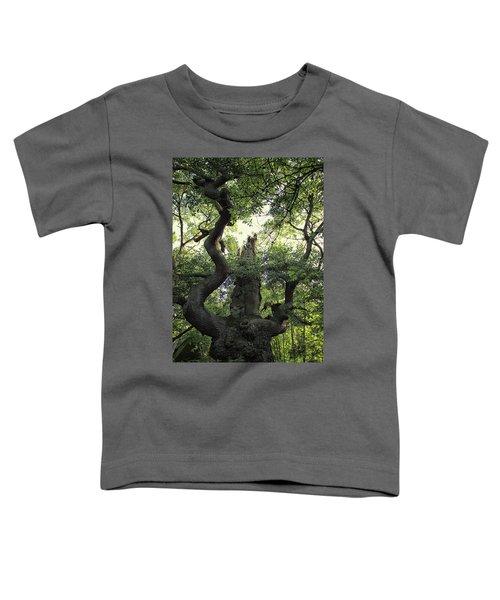 Sherwood Forest Toddler T-Shirt