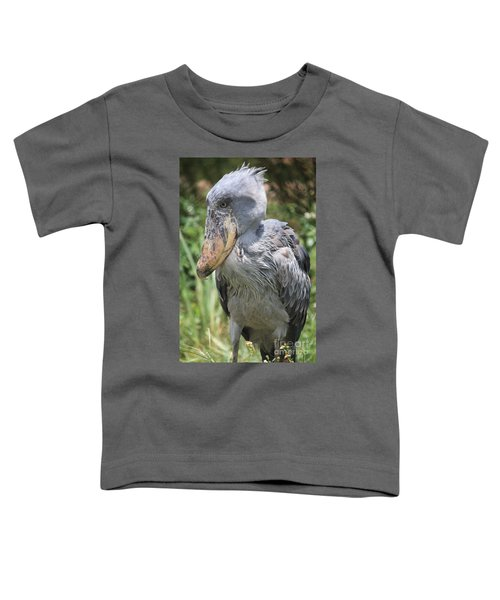 Shoebill Stork Toddler T-Shirt by Carol Groenen